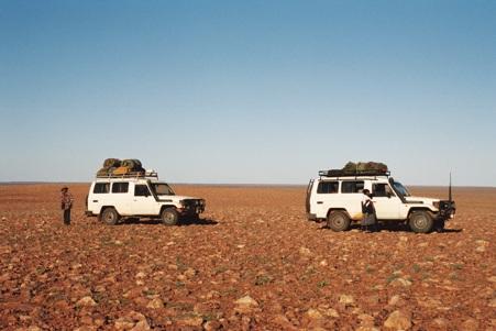 Cars-Simpson-Desert2