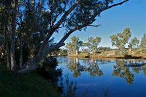 Redbank Waterhole on Owen Springs Reserve