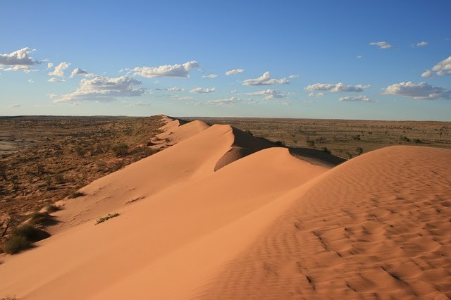Big Red, Simpson Desert National Park, Queensland, Australia