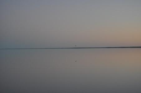 Lake Eyre Tours