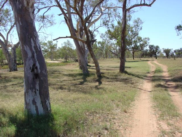 Owen Springs Reserve, near Alice Springs