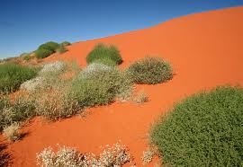 Simpson Desert National Parks, Australia, travel