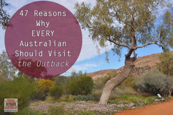 47-reasons