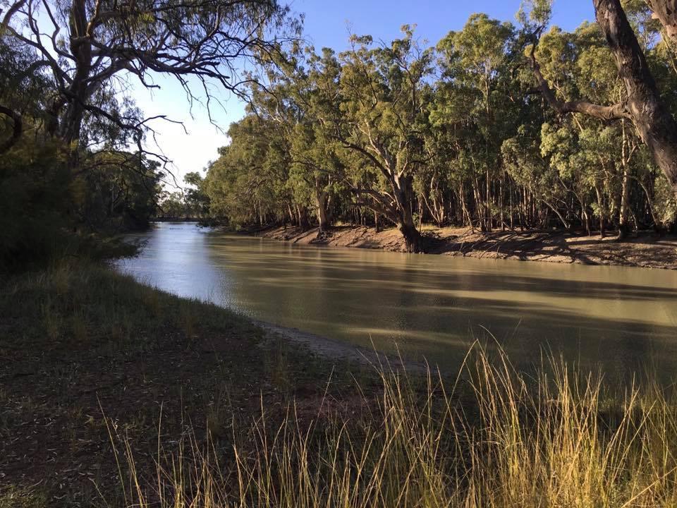 Yanga National Park, Murrumbidgee River, NSW