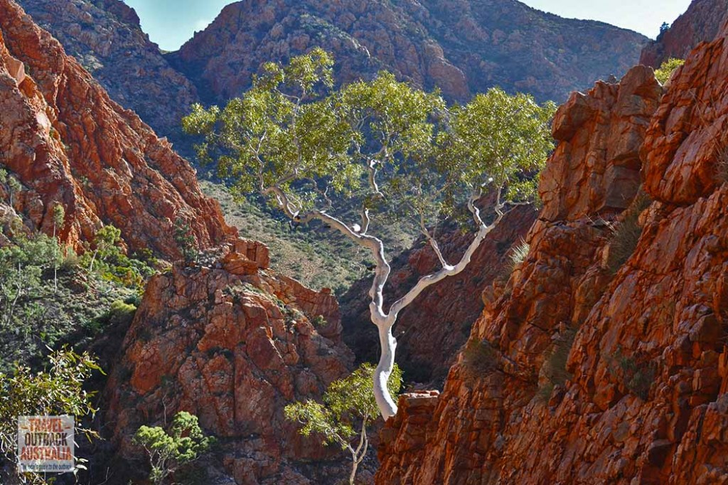 Standley Chasm, West MacDonnell Ranges, Alice Springs